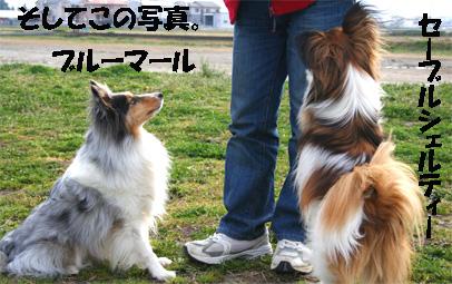 yuzumaru070312-1.jpg