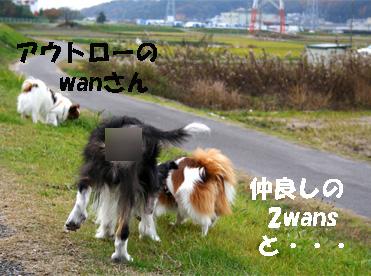 yuzunura061219-1.jpg
