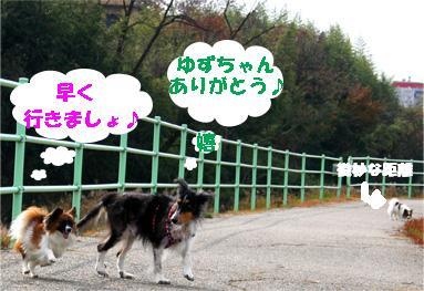 yuzunura061219-2.jpg