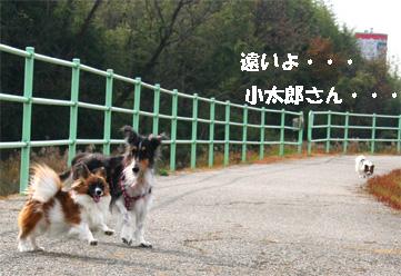 yuzunura061219-3.jpg