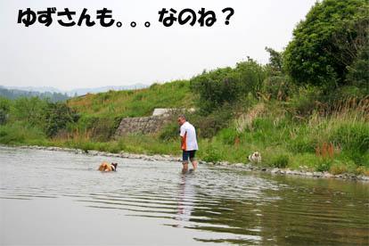 yuzupapa1.jpg
