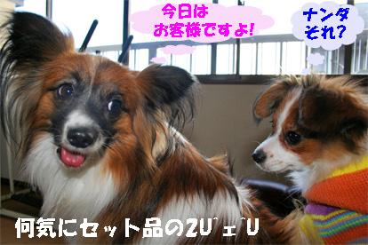 yuzusora080110-1.jpg