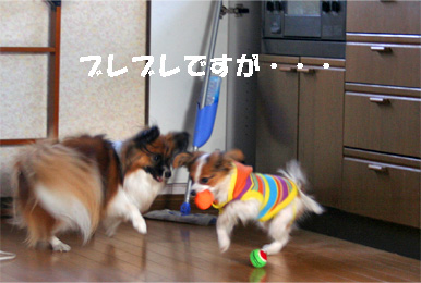 yuzusora080110-2.jpg