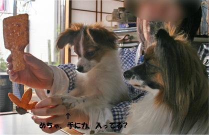 yuzusora080112-1.jpg