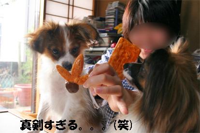 yuzusora080112-2.jpg