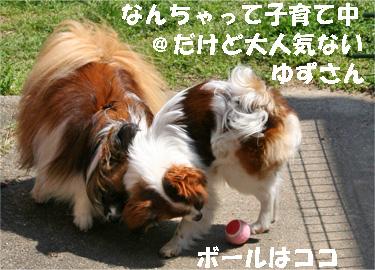 yuzusora080401-4.jpg