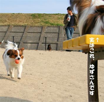 yuzusora080409-1.jpg