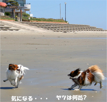 yuzusora080422-2.jpg