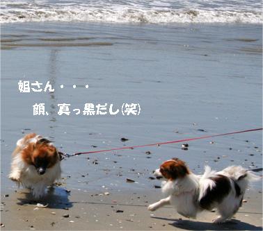 yuzusora080424-1.jpg