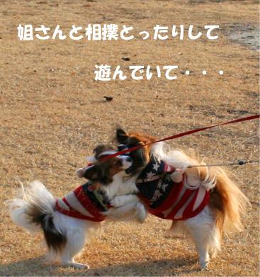 yuzusora090207-1jpg.jpg