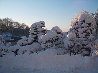 大雪2月1日