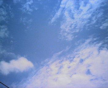 200606051259000.jpg