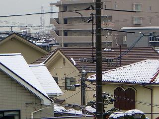 08119-3.jpg