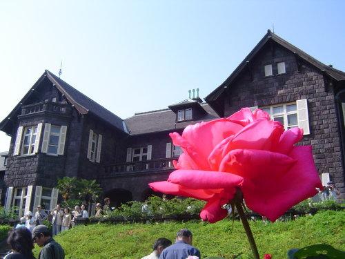 2008・05・21 旧古河庭園 昼 ①