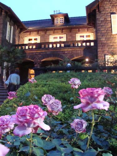 古河庭園09 バラ14 2009.05.21