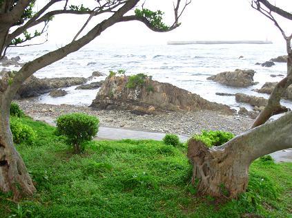 屋久島0055