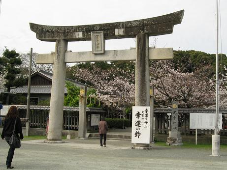 西公園の桜05