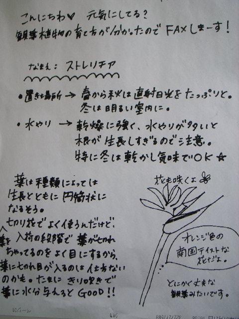 20070124091411.jpg