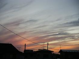 2008_10010039.jpg