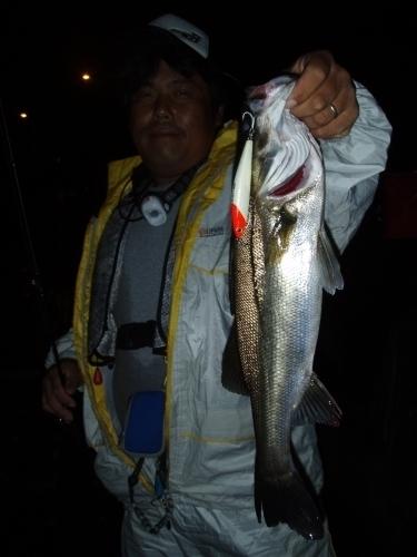 2009.8.2大阪湾シーバス