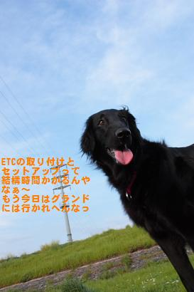 2009422007.jpg