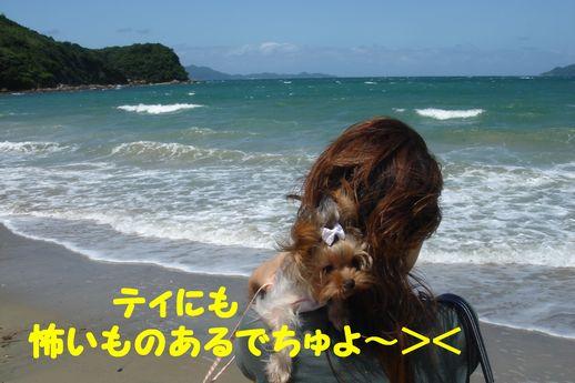 恋の浦13
