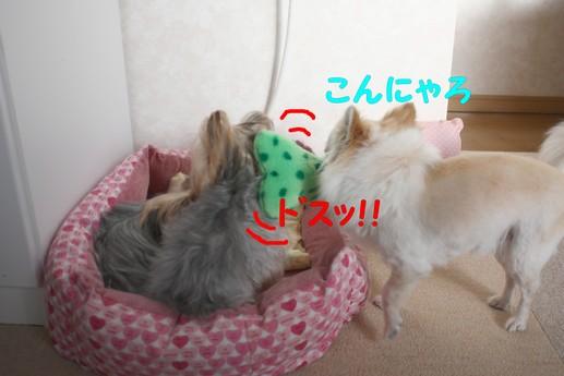 3シャン6