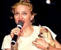 Madonna-001.jpg