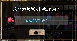 20061129074632.jpg