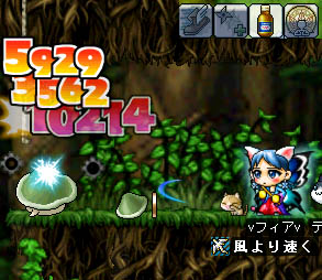 07_11_25_03.jpg