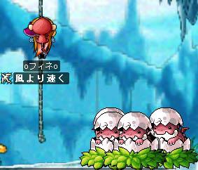 08_01_05_08.jpg