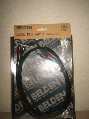 BELDEN_CLR_Two.jpg