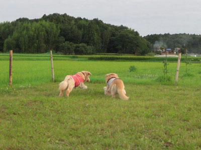 2009-08-05.jpg