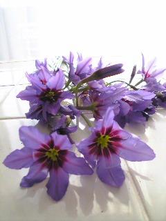 花の写真コンテスト