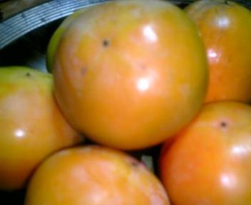 プリザーブドフラワー教室  柿