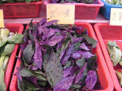 台湾の野菜5