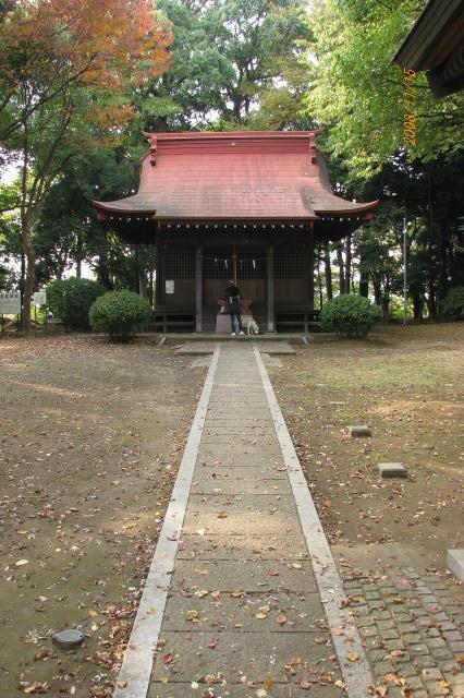 20081115 (3)