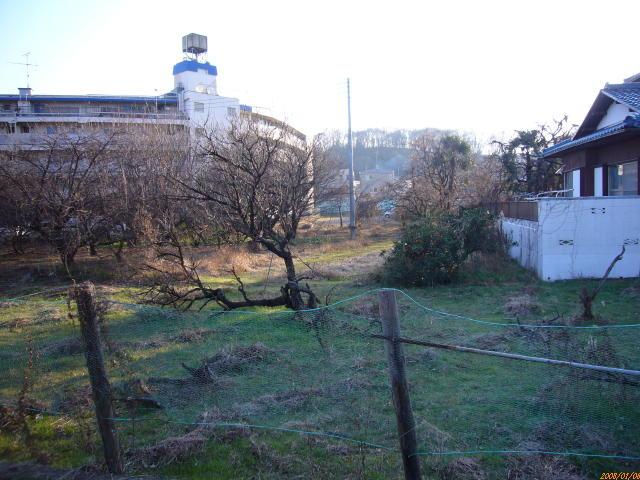 2008_01060038.jpg