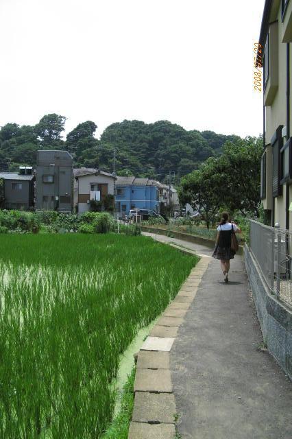 2008_07200015.jpg