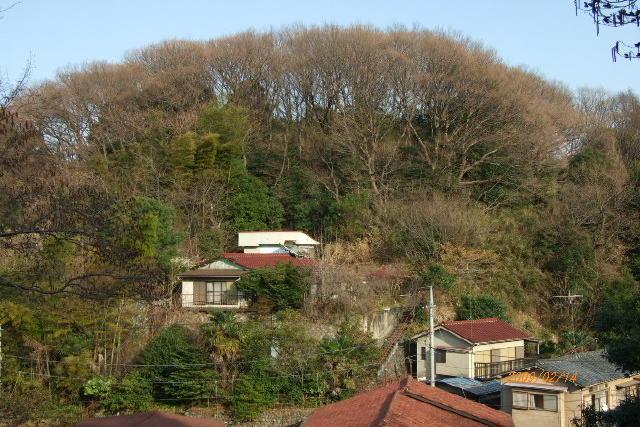 hikuta090214 (7)