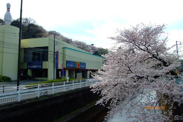 nagao20090405-003.jpg