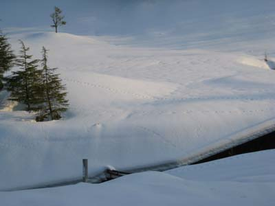 雪のゴルフ場にて1