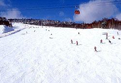 国際スキー場