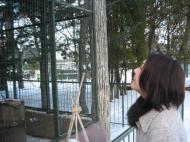 鳥を見る彼女さま