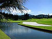 kokusai_golf.jpg