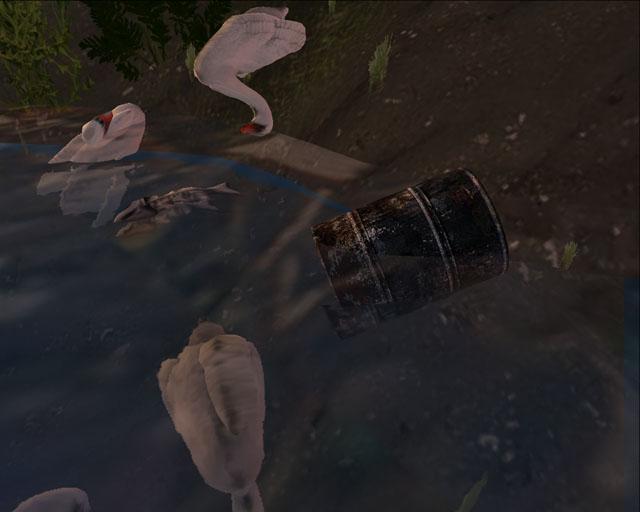 swan01_20090822012517.jpg