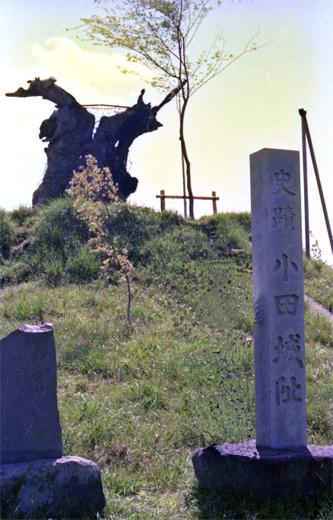 19790503関鉄筑波線・-常陸小