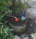 水琴窟 耳に竹筒をあてて排水口に水滴を落とす