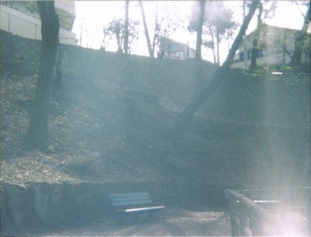 ベイビーホルガ 公園1