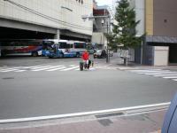IMGP0616.jpg